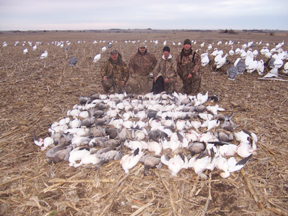 226500d3069dd Last Pass Guide Service Spring Snow Goose Hunting in Missouri and South  Dakota Mound City Missouri is where we usually start up our spring snow  goose hunts ...